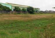 Cho thuê đất trống xây dựng nhà xưởng tại Sông Công, Thái Nguyên, DT 1010m2