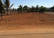 Đất thổ cư hẻm Nguyễn Chí Thanh, 6,5x25m = 265 triệu