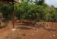 Bán trang trại mặt tiền đường Dã Tượng, giá 5,5 tỷ