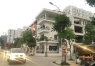Bán biệt thự liền kề Minh Khai, trong Times City kinh doanh sầm uất