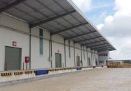 Cho thuê kho xưởng 7.100m2 đến 23.000m2 mặt tiền xã Long Thới, Nhà Bè
