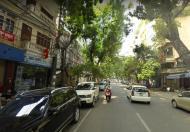 Bán nhà mặt phố Trần Xuân Soạn, quận Hai Bà Trưng, 100m2, 6 tầng, MT 4.5m, giá thỏa thuận