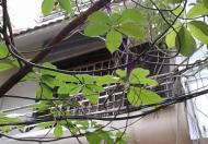 Bán nhà phân lô mặt ngõ Đặng Văn Ngữ, 42m2, 4 tầng, giá 4,8 tỷ
