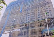 Chính chủ bán căn hộ chung cư CC Roman Plaza