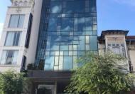 Cần bán tòa nhà MT Trần Nhật Duật, P.Tân Định, Q.1, DT: 8.8x19.6m, vuông vức, 1 hầm, 1 trệt, 8 lầu