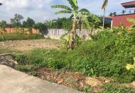 Bán mảnh đất trong Thôn Huê, Hoa Động, diện tích 180m, giá 5tr/m
