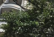 Cho thuê nhà Hoàng Hoa Thám: 12 triệu/tháng, 40m2x5 tầng, ô tô đỗ cửa, hướng TB