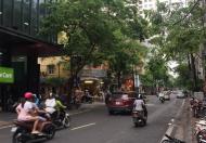 Bán nhà mặt phố Nguyên Hồng,Đống Đa,Hà Nội.dt 90 m2 x 8T,giá 37 tỷ.