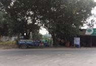 Cần bán gấp đất mặt tiền Hoàng Hữu Nam, sát bến xe Miền Đông, Quận 9