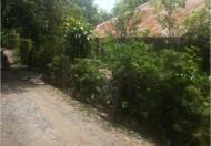 Bán đất tại Xã Bình Thạnh Trung, Lấp Vò, Đồng Tháp diện tích 6000m2  giá 4 Tỷ