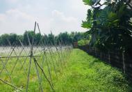 Bán đất thổ cư ở Xã Tân Phú Trung, DT: 2600m2 - Giá:13,5 tỷ. Lh 0939.81.3696
