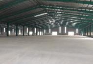 Cho thuê nhà xưởng mới xây Khu Công Nghiệp Cát Lái, Q.2, DT: 24x40m, trệt, 2 lầu. Giá: T/L