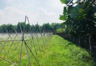 Bán đất đường Cây Da, Tân Phú Trung, Củ Chi, DT 2600m2, Giá 13,5 tỷ, Lh 0939813696