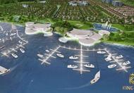 King Bay - Kênh đầu tư an toàn cho giới đầu tư