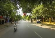 Mặt phố Hàng Bài, hiếm, kinh doanh tuyệt vời, giá cho thuê cao, 75m2, MT 6m, giá 55 tỷ