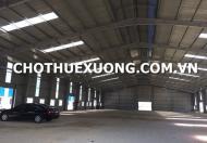 Cho thuê nhà xưởng tại Hà Trung Thanh Hóa giá rẻ DT 5010m2