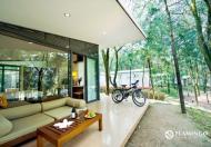 Mở bán 3 căn biệt thự rẻ nhất của Flamigo Đại Lải, 2 tỷ (225m2), giá CĐT ,ck 35%. LH 0936.193.286