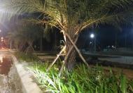 Nhận đặt chỗ giai đoạn 3 dự án Tăng Long Angkora Park Quảng Ngãi