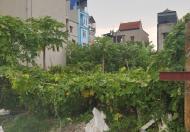Dương Nội cần bán lô đất 40m2, 2 thoáng ô tô vào nhà, giá 1,434 tỷ