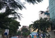 Bán gấp nhà đẹp mặt phố Nguyên Du, DT 45m2, 4 tầng, giá 45 tỷ, LH 0912 313 699