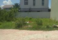 Bán đất biệt thự phường Bửu Long, khu Song Ngữ Lạc Hồng