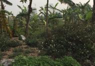 Bán đất Dương Nội, Hà Đông, SĐCC, 930 triệu/30m2