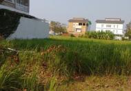 Chuyên bán đất nền dự án KDC Phú Xuân Vạn Phát Hưng, giá rẻ chỉ 19.5tr/m2