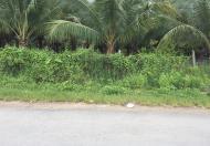 Bán 1.850m2 đất mặt tiền đường tại Cù Lao, xã Hiệp Hòa