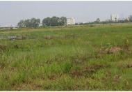 Cho thuê đất MTNB Nguyễn Thị Thập, Q.7, DT: 12.000m2. Giá: Thương lượng