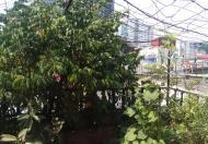Bán nhà cách phố Xã Đàn 50m, 5 tầng, 35m2, thoáng 2 mặt