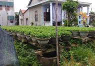 Đất kiệt Phạm Văn Đồng thuộc xóm 4 Ngọc Anh, đường ô tô, 837 triệu