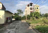 Cần bán 02 lô đất đấu giá tại thôn Thuận Quang, Dương Xá, Gia Lâm. DT 86m2, mặt tiền 5m