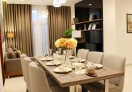 Bán căn hộ Phú Thạnh, DT 45m2, 1PN, giá 1,2 tỷ còn TL, LH 0708544693