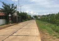 Gia đình đang cần bán 4888m2 đất mặt tiền đường chính xã Xuân Đông, Cẩm Mỹ, Đồng Nai - 0937012728