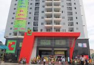 Cho thuê căn hộ Phú Thạnh, DT 82m2, 2PN, có NT, giá 8tr/tháng, LH 0708544693