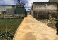 Chuyển nhượng gấp lô đất nông nghiệp tại Cao Thắng, phường 7, thành phố Đà Lạt