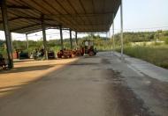 Bán nhà xưởng công ty tại Tân Phước, Đồng Phú, Bình Phước