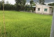 Bán gấp 981.12m2 đất vườn gần trạm thu phí Cai Lậy, Tiền Giang, cách mặt tiền Quốc lộ 1A 40m