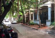 Bán nhà phân lô, ô tô, kinh doanh đỉnh Trần Quang Diệu, 35m2, 5 tầng, giá 5.1 tỷ