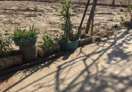 Bán lô đất Đông La- Hoài Đức 52m oto đỗ cửa sát đất đấu giá( giá 1 tỷ 140tr)