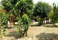 Sang nhượng nhà hàng sinh thái cao cấp 2300m2 mặt QL 379, Gia Lâm, Hà Nội