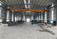 Chính chủ cho thuê kho xưởng từ 2000m tại Tân Tiến - Văn Giang, Hưng Yên. (Cách cầu Thanh Trì 10km)