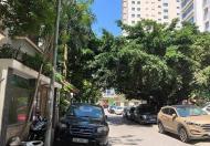 Bán gấp lô đất phố Yên Lãng, vị trí đẹp, 53m2, MT 4.2m, giá 4 tỷ