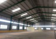 Cho thuê kho, xưởng MT Nguyễn Văn Quỳ, Q.7, DT: 800m2.Giá: 100N/m2