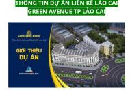 Nhà phố kinh doanh mặt đường Trần Hưng Đạo