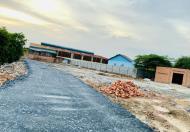 Bán đất gần đường Bùi Hữu Nghĩa, Tân Hạnh, 5x18m, giá 550tr