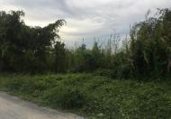 Bán đất xây biệt thự ven sông Sài Gòn ở Vĩnh Phú, Thuận An, Bình Dương, 2564m2, giá 14 tỷ