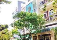 Nhà đẹp mặt tiền đường D5 khu Phạm Hữu Lầu, Quận 7