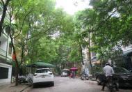 Cho thuê biệt thự mặt ngõ ô tô Trương Định, Bạch Mai