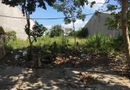 Cho thuê lô đất DT lớn, MT đường D9 khu TĐC Phú Mỹ